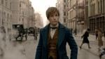 'Fantastic Beasts' Films: How Much is Too Much?