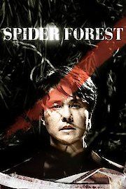 Spider Forest