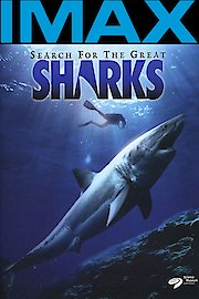 Search for the Great Sharks