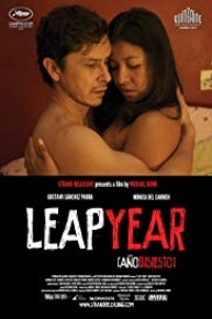Watch Leap Year Online Full Movie From 2010 Yidio