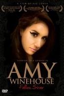 Amy Winehouse - Fallen Star