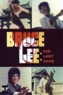 Bruce Lee: Last Days Last Nights