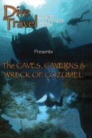 Dive Travel: The Caves, Caverns and Wreck of Cozumel
