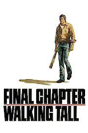 Walking Tall: Final Chapter