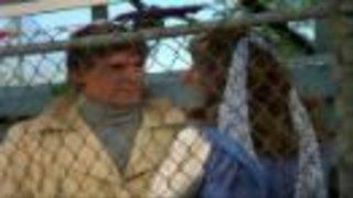 Watch Battlestar Galactica Classic Season 2 Episode 4 - Spaceball Online