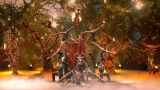 Watch America's Got Talent - AcroArmy Channels Tim Burton's Nightmare Before Christmas Online