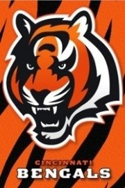 NFL Follow Your Team - Cincinnati Bengals