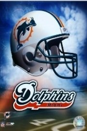 NFL Follow Your Team - Miami Dolphins
