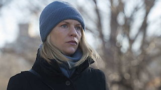 Watch Homeland Season 6 Episode 9 - Sock Puppets Online