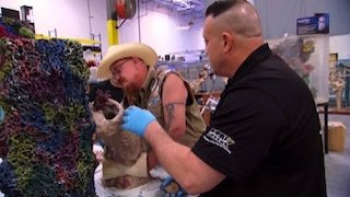 Watch Tanked Season 11 Episode 2 - Johnny Damon is Expe... Online