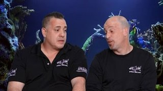 Watch Tanked Season 11 Episode 7 - Imaginarium Aquarium Online