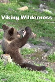 Viking Wilderness