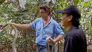Watch Outback Wrangler Season 1 Episode 2 - Predator Island Online