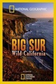 Big Sur: Wild California
