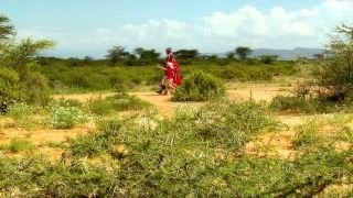 Watch Are We There Yet? World Adventure Season 1 Episode 8 - Kenya Online