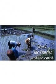 The Monk, The Princess And The Forest