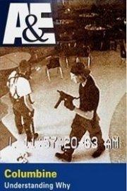 Columbine: Understanding Why