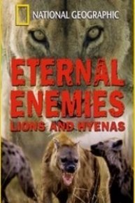 Eternal Enemies: Lions and Hyenas