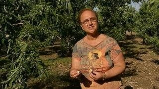 Watch Lidia's Italy Season 3 Episode 26 -  Conquering Cauliflo... Online