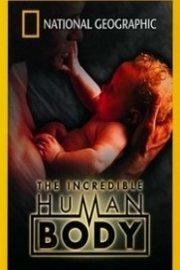 The Incredible Human Body
