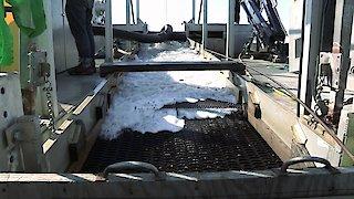 Watch Bering Sea Gold Season 6 Episode 2 - Pressure Online