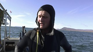 Watch Bering Sea Gold Season 6 Episode 8 - Turf War Online