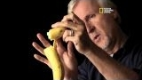 Watch Titanic 100 Years Season  - Titanic 100 - The Banana Theory: Cameron On Camera Discussion Online