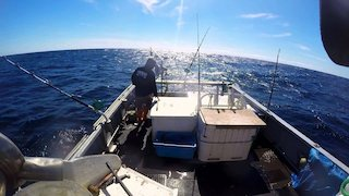 Watch Wicked Tuna Season 4 Episode 14 - Knock Out Punch Online