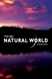 BBC Natural World Collection