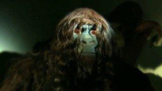 Watch Animal X Season 1 Episode 1 - Texas Bigfoot Online