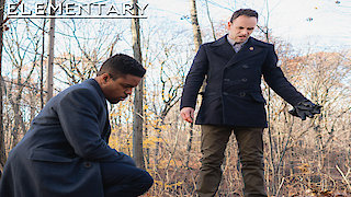 Watch Elementary Season 5 Episode 12 - Crowned Clown, Downt... Online