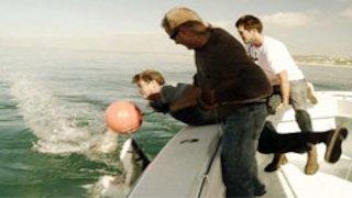 Shark Wranglers Season 1 Episode 2