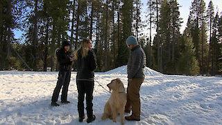 Watch Haunted Highway Season 2 Episode 4 - Lake Murray Beast/th... Online