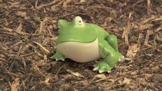 Watch Waybuloo Season 1 Episode 23 - Frog Online