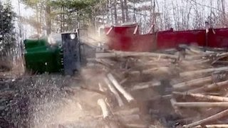 Watch American Loggers Season 3 Episode 5 - The Miracle of Milli... Online