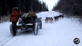 Watch Yukon Men - Stan Has A Solution For Snow-Less Sledding... Time To Go Dog-Karting! Online