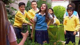 Watch La Rosa de Guadalupe Season 1 Episode 455 - El Camino de la Incl... Online