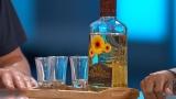 Watch The Doctors Season  - Tequila: The New Probiotic? Online