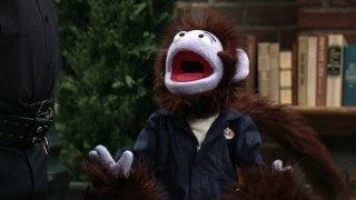 Watch Crash & Bernstein Season 2 Episode 11 - Monkey Business Online