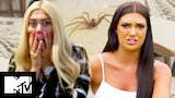Watch Geordie Shore - The Most Radge AF Aussie Animals | Geordie Shore 17 Online