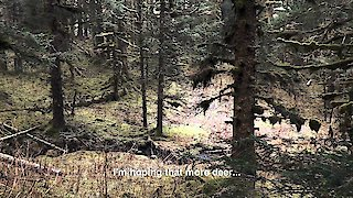 Watch Alaska: The Last Frontier Season 5 Episode 16 - Do Or Die Online