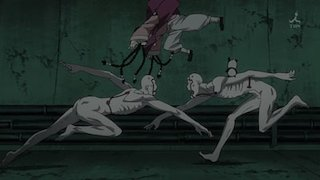 Watch Fullmetal Alchemist: Brotherhood Season 2 Episode 25 - The Immortal Legion Online