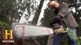 Watch Ax Men - Ax Men: How to Cut Down a Tree (S9, E14) | History Online