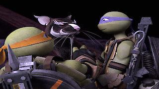 Watch Teenage Mutant Ninja Turtles (2012) Season 4 Episode 21 - Darkest Plight Online