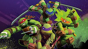 Watch Teenage Mutant Ninja Turtles (2012) Season 4 Episode 19 - Bat in the Belfry Online