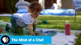 Watch The Mind of a Chef - THE MIND OF A CHEF | Season 5 Episode 10 Preview: Instinct vs. Discipline | PBS Online