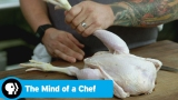 Watch The Mind of a Chef - THE MIND OF A CHEF | Season 5 Episode 14 Preview: Birds | PBS Online