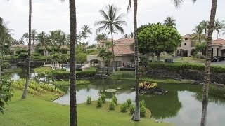 Watch Hawaii Life Season 7 Episode 9 - Home Base on the Big... Online