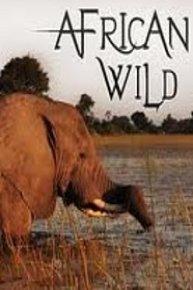 African Wild