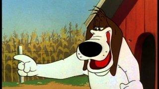 Watch Looney Tunes: Foghorn Leghorn Season 1 Episode 15 - Sock-a-Doodle Doo Online